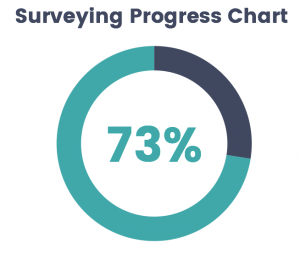 Berry Lodge Surveyors Progress Chart